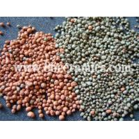 Best Filtration materials of the ceramic grain wholesale