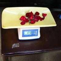 Best Hotel supplies Series INFANT SCALE wholesale