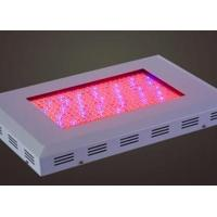 Best TJ-ZWD4 square LED large power grow light wholesale