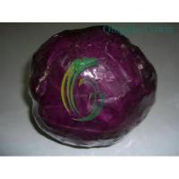 Buy cheap purple cabbages.exporter from wholesalers