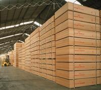 Best Plywood wholesale