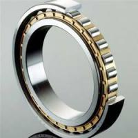Best Single Row Full Complement Cylindrical Roller Bearings ID over 150mm wholesale