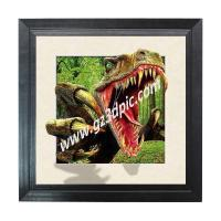Best Products 5D lenticular picture framed 40x40cm wholesale