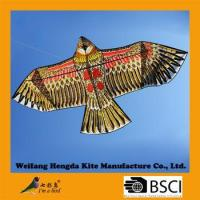 Best chinese hawk bird kite wholesale