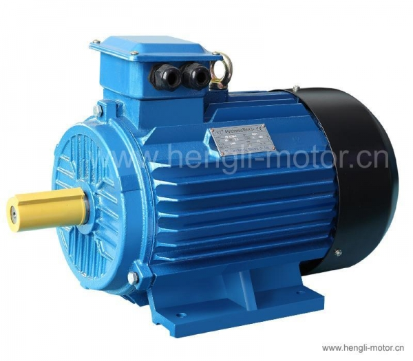 Details of three phase induction motor hl y2 series 44664637 for 3 phase motor for sale