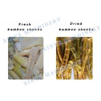 China Spring Bamboo Shoots Dryer/Fruit and Vegetable Processing Plant swirl type dryer on sale