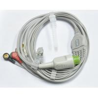 biolight A series ECG cable and leads