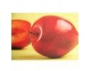 Cheap Cold Laminating Film 13#D Silk Texture for sale
