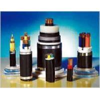 Best Plastic Insulated and Sheathed Branch Cable with the Rated voltage at 0.6/1kV and Below wholesale