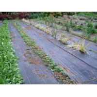 Best Ground Cover Net wholesale
