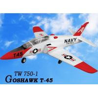 China Hobby R/C Electric plane 3819 on sale