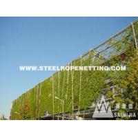 Stainless Steel Cable Mesh Green plant climbing rope netting