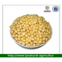 China China Hot Selling Soybean on sale