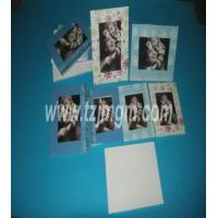 Best European Style Photo Frame wholesale