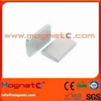 Best Arc/Segment Neodymium Magnet wholesale