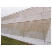 Best Anti Insect Netting wholesale