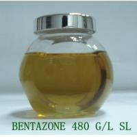 China 480 G/L bentazone soluble concentrate Herbicide for rice field on sale