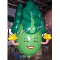 China Inflatable Balloons Q-0103 on sale
