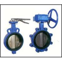 Best Bi-axial butterfly valve witho wholesale