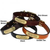 Best English Bridle Leather Dog Collar with Personalized Nameplate wholesale