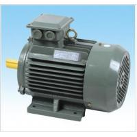 Y2 series 3-phase induction motor