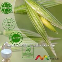 Best Natural Avena Sativa Extract wholesale