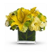 Best Mothers Day Oh Happy Day by Teleflora wholesale