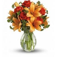Best Fiery Lily and Rose [T47-2A] wholesale