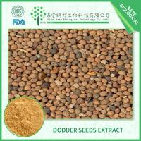 Best Dodder seeds extract wholesale