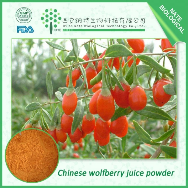 Cheap Chinese wolfberry juice powder for sale