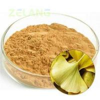 Best Ginkgo Biloba Extract 24:6 Normal wholesale