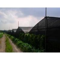 Best insect proof net for greenhouse wholesale