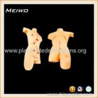 Best Model of Surgical suture dressing 3d anatomy model wholesale