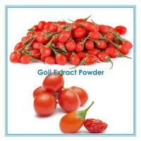 Best Chinese Factory Supply Wolfberry Fruit Powder wholesale