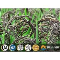 China Black rice extract| anthocyanin|C3G| black rice protein| resistant starch on sale