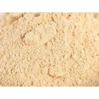 China China Export 1st Grade Dehydrated Red Onion Powder Price and Supply on sale