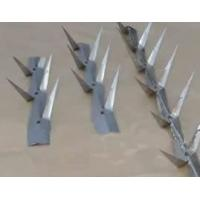 Best Wall Spikes wholesale