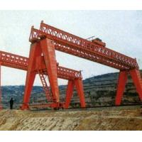 Gantry Crane for Project