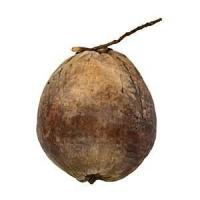 Buy cheap Large Brown Decorative Coconut from wholesalers