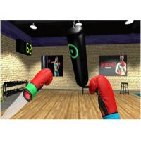 Best High Precision Virtual Reality Video Games Boxing Sports 2ms Low Latency wholesale