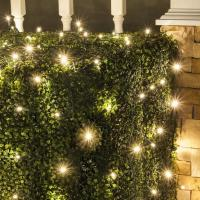 Buy cheap Christmas Lights Item Number: 72520 from wholesalers