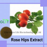 Best Rose Hips Extract wholesale