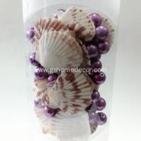 Best Wholesale Seashell Craft for Home Decoration wholesale