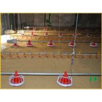 China Layer chicken cage Automatic feeding system JW-LX Automatic Chicken Feeding System on sale