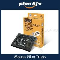 China Plastic Glue Box Catch Jumbo Mouse Glue Trap on sale