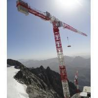 China Potain MD Topbelt Tower Crane Top Slewing Tower Cranes on sale