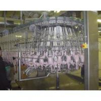Large Chicken Automatic Eviscerator for poultry processing equipment