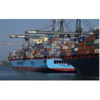 Best Professional International Sea Freight Forwarder wholesale