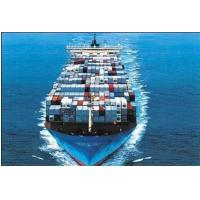 Cheap Strong Customs Clearance Ability at Pol & Pod for sale