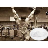 Best Effective Raw Steroid Powder Tibolone Accetate For Muscle Gainning 5630-53-5 wholesale